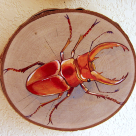 Original Art – Acrylic Painting on Birch Wood Round – Red & Gold Stag Beetle