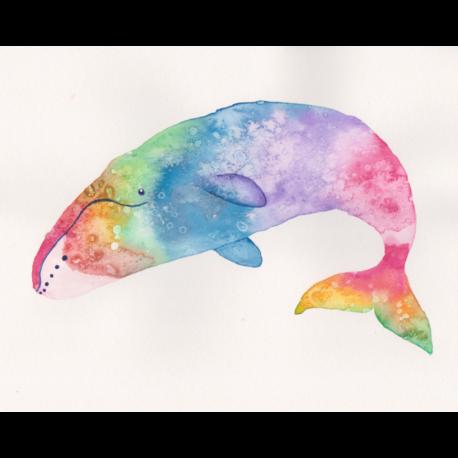 Rainbow Bowhead Whale