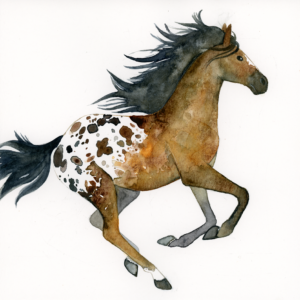 "Appaloosa Horse - 2018 - 8""x8"" - Watercolor on Watercolor Paper"