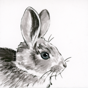 "Rabbit (Inktober) - 2018 - 3""x3"" - Ink on Watercolor Artboard"