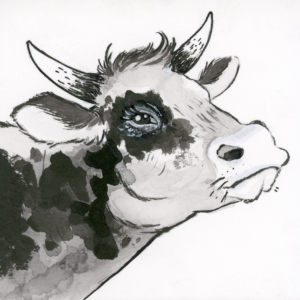 "Cow (Inktober) - 2018 - 3""x3"" - Ink on Watercolor Artboard"